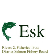 The Rivers North Esk and South Esk are two of the most prolific and attractive salmon and sea trout rivers in Scotland, flowing through Angus into the sea on the East Coast near Montrose. In addition to caring for these two fine rivers, the Trust's remit includes conservation and habitat improvement work on lesser known Bervie and Lunan Waters.