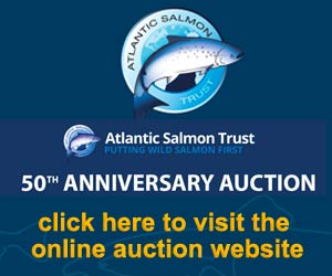AST 2017 Auction